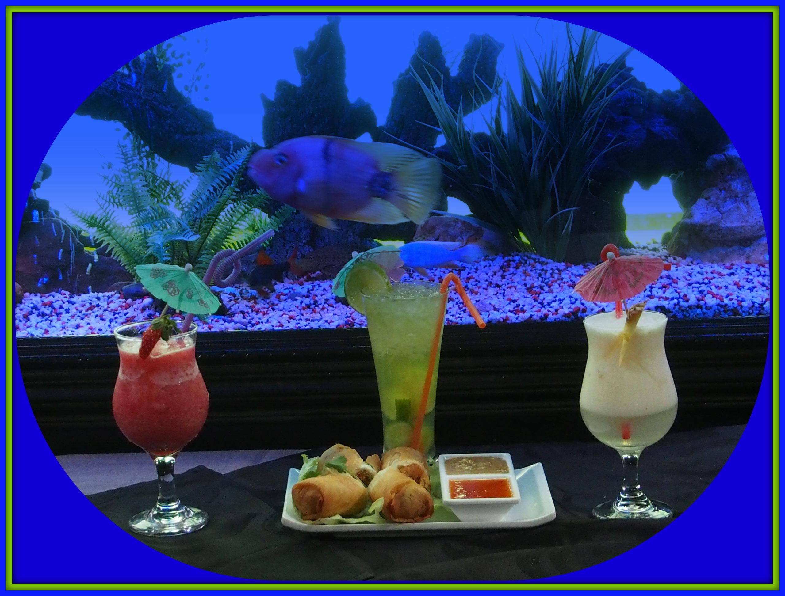 randburg restaurant fusionista asian - cocktails by the fish tank